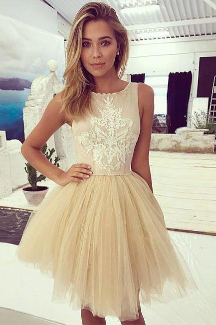 Champagne Lace Homecoming Dresses,Tulle Short Prom Dress, Champagne Homecoming Dress